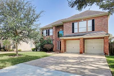 Bellaire Single Family Home For Sale: 1106 Howard Lane