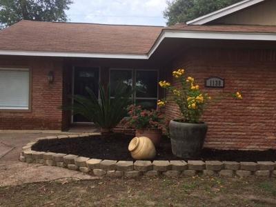 Houston Single Family Home For Sale: 1138 Stonecrest Drive