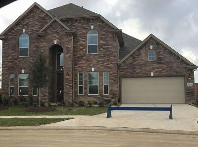 League City TX Single Family Home For Sale: $400,000