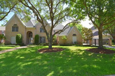 Katy Single Family Home For Sale: 20010 Sky Hollow Lane