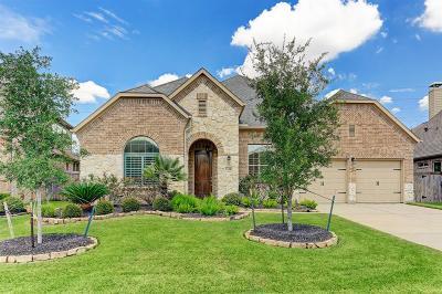 Manvel Single Family Home For Sale: 3119 Manzanita Lane