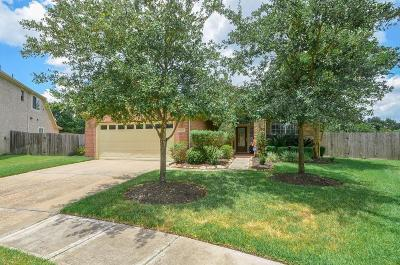 Katy Single Family Home For Sale: 5003 Meadow Dawn Court