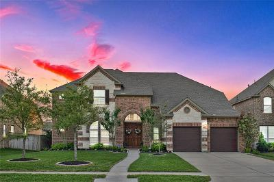 Katy Single Family Home For Sale: 3418 Leaning Willow Drive