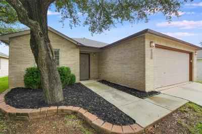San Antonio Single Family Home For Sale: 20726 Blue Trinity