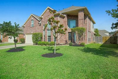 Tomball Single Family Home For Sale: 9022 Kinnel Lane