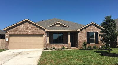 Katy Single Family Home For Sale: 4903 Vergano Villa Drive
