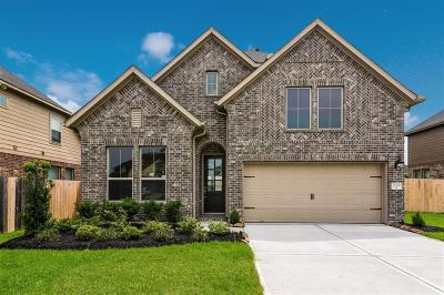 Pearland Single Family Home For Sale: 2109 Post Oak Court
