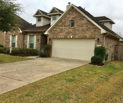 Friendswood Single Family Home For Sale: 4335 Staghorn Lane