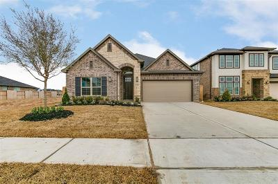 Katy Single Family Home For Sale: 6319 Grand Summit Court