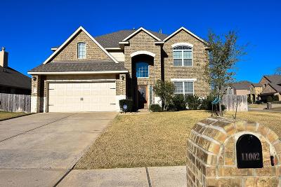 Tomball Single Family Home For Sale: 11002 Sir Alex Drive