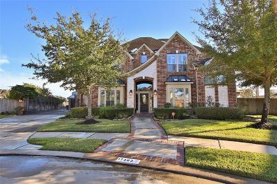Houston Single Family Home For Sale: 17403 Shoal Lake Lane