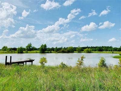 Austin County Country Home/Acreage For Sale: 9137 Kloss Road