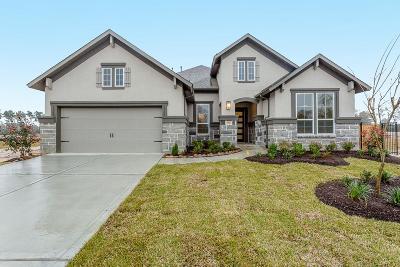 Porter Single Family Home For Sale: 5506 Fulvetta Park Trail