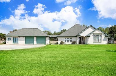 Alvin Single Family Home For Sale: 7815 County Road 168