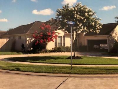 Dickinson Single Family Home For Sale: 2450 Kinsdale Avenue