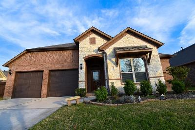 Tomball Single Family Home For Sale: 11007 Sir Alex Drive