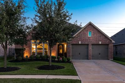 Pearland Single Family Home For Sale: 13210 Lone Creek Lane