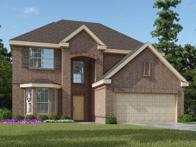 Rosenberg Single Family Home For Sale: 5802 Golden Peak Lane