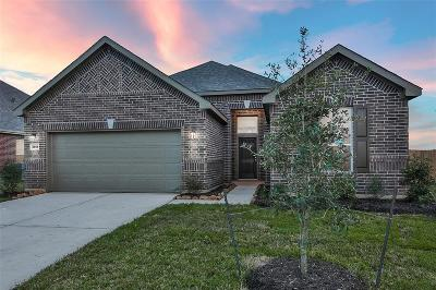 Single Family Home For Sale: 3904 Honey Hill Lane