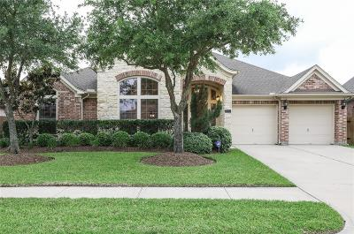 Pearland Single Family Home For Sale: 2602 White Falls Drive