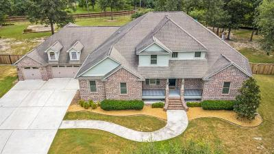 Spring Single Family Home For Sale: 27506 Apple Court