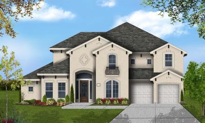 Katy Single Family Home For Sale: 2522 Winsford Horizon Lane