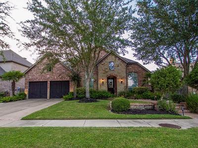 Sugar Land Single Family Home For Sale: 902 Floriencia Street