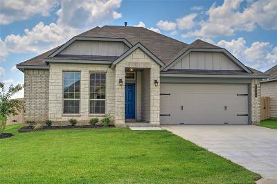 Washington County Single Family Home For Sale: 100 Trellis Pass