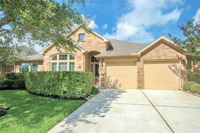 Katy Single Family Home For Sale: 9615 Moonstone Mist Lane