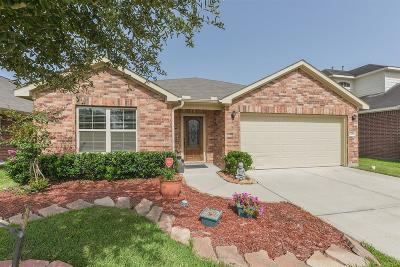 Katy Single Family Home For Sale: 6706 Albion Cresent Drive