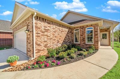 Willis Single Family Home For Sale: 14671 Ophiuchus Court