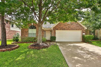 Houston Single Family Home For Sale: 9203 Willow Crossing Drive