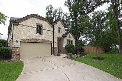 Spring Single Family Home For Sale: 22002 Meandering Springs Drive
