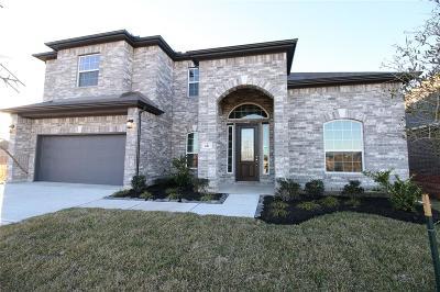 League City Single Family Home For Sale: 611 Sugar Trail Drive