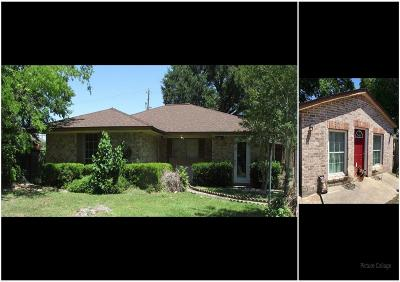 Houston Single Family Home For Sale: 4502 Spring Valley Road