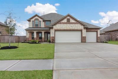 Tomball Single Family Home For Sale: 12623 Sherborne Caste