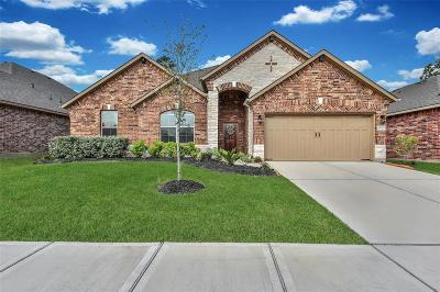 Single Family Home For Sale: 4806 Preserve Park Drive