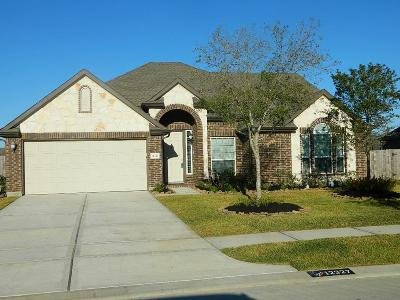 Tomball Single Family Home For Sale: 12327 Northpointe Ridge Lane