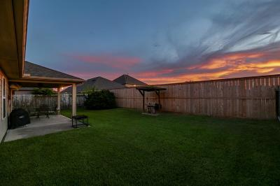 Waller County Single Family Home For Sale: 9979 Willow Falls Lane
