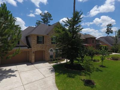 The Woodlands Single Family Home For Sale: 63 S Fair Manor Circle