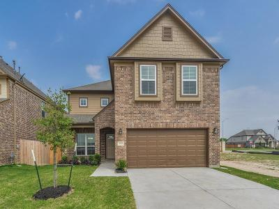 Katy Single Family Home For Sale: 20706 May Dawn