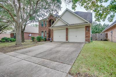 Houston Single Family Home For Sale: 3319 Shadowchase Drive