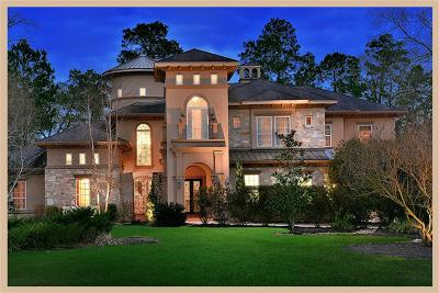 Conroe, Spring, The Woodlands Single Family Home For Sale: 3706 W Benders Landing Boulevard