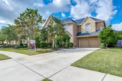 Katy Single Family Home For Sale: 9911 Touhy Lake Drive