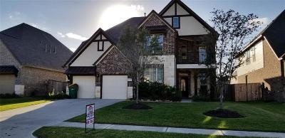 Pearland Single Family Home For Sale: 3504 Sunburst Creek