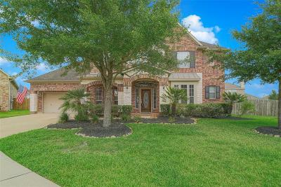 Shadow Creek Ranch Single Family Home For Sale: 2409 Harbor Pass Drive