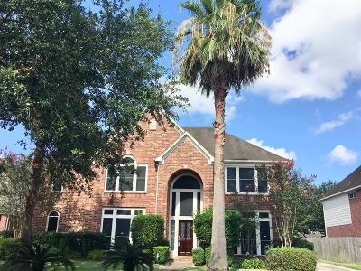 League City Single Family Home For Sale: 308 Pinnacle Cove Court