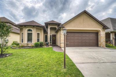 Montgomery Single Family Home For Sale: 9325 Old River Court E