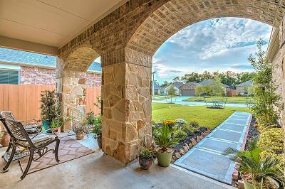 League City Single Family Home For Sale: 656 Tenuta Lane
