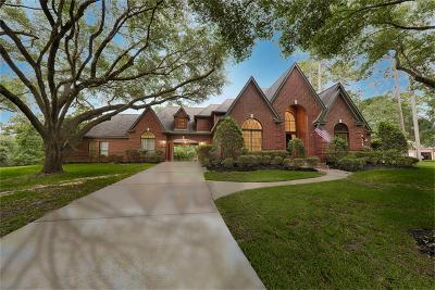 Tomball Single Family Home For Sale: 23134 Red Oak Trail